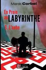 En proie au labyrinthe