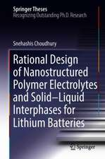 Rational Design of Nanostructured Polymer Electrolytes and Solid–Liquid Interphases for Lithium Batteries