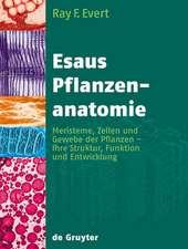 Esaus Pflanzenanatomie: Meristeme, Zellen und Gewebe der Pflanzen - ihre Struktur, Funktion und Entwicklung