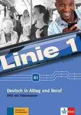 Linie 1 A1 - Deutsch in Alltag und Beruf: DVD