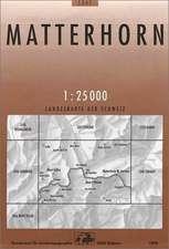 Swisstopo 1 : 25 000 Matterhorn