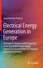 Electrical Energy Generation in Europe: The Current Situation and Perspectives in the Use of Renewable Energy Sources and Nuclear Power for Regional Electricity Generation