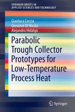 Parabolic Trough Collector Prototypes for Low-Temperature Process Heat