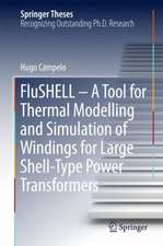 FluSHELL – A Tool for Thermal Modelling and Simulation of Windings for Large Shell-Type Power Transformers