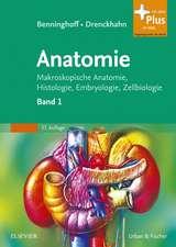 Benninghoff, A:  Anatomie 1