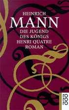 Die Jugend des Königs Henri Quatre