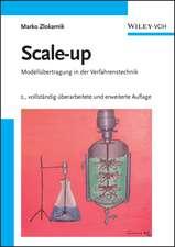 Scale–up: Modellübertragung in der Verfahrenstechnik