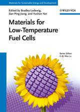 Materials for Low–Temperature Fuel Cells