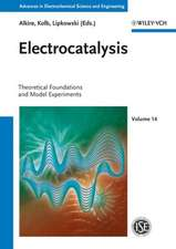 Electrocatalysis: Theoretical Foundations and Model Experiments