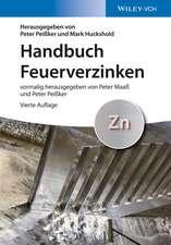 Handbuch Feuerverzinken