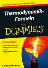 Thermodynamik–Formeln für Dummies