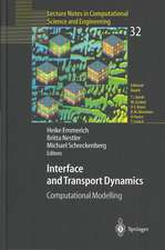 Interface and Transport Dynamics: Computational Modelling