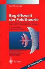 Begriffswelt der Feldtheorie: Praxisnahe, anschauliche Einführung