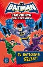 Batman - Labyrinth der Gefahren. Du entscheidest selbst!