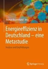 Energieeffizienz in Deutschland - eine Metastudie: Analyse und Empfehlungen