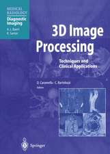 3D Image Processing: Techniques and Clinical Applications