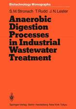 Anaerobic Digestion Processes in Industrial Wastewater Treatment