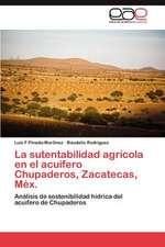 La Sutentabilidad Agricola En El Acuifero Chupaderos, Zacatecas, Mex.:  Mosaico de Identidades