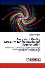 Analysis of Quality Measures  for Medical Image Segmentation