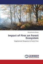 Impact of Fires on Forest  Ecosystem