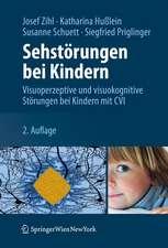 Sehstörungen bei Kindern: Visuoperzeptive und visuokognitive Störungen bei Kindern mit CVI