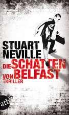 Die Schatten von Belfast