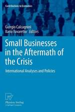 Small Businesses in the Aftermath of the Crisis: International Analyses and Policies