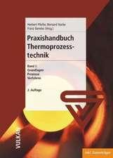 Praxishandbuch Thermoprozesstechnik 1