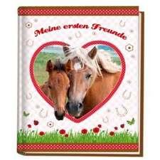 Pferde Kindergartenfreundebuch