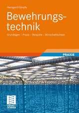 Bewehrungstechnik: Grundlagen - Praxis - Beispiele - Wirtschaftlichkeit