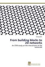 From building blocks to 2D networks