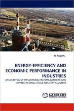 Energy-Efficiency and Economic Performance in Industries