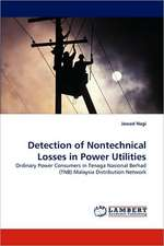 Detection of Nontechnical Losses in Power Utilities