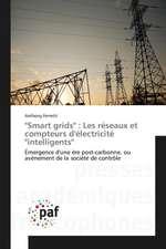 """""""Smart grids"""" : Les réseaux et compteurs d'électricité """"intelligents"""""""