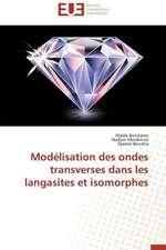 Modelisation Des Ondes Transverses Dans Les Langasites Et Isomorphes:  Cristaux Liquides