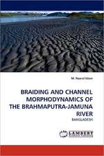 Braiding and Channel Morphodynamics of the Brahmaputra-Jamuna River