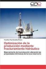 Optimizacion de La Produccion Mediante Fracturamiento Hidraulico:  Comunidad Virtual de Profesionales