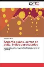 Asperas Punas, Cerros de Plata, Indios Desacatados:  de Caciques a Ciudadanos, Santa Maria Xochiaca