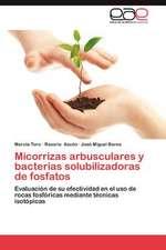 Micorrizas Arbusculares y Bacterias Solubilizadoras de Fosfatos:  Grupo Uralita