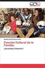 Funcion Cultural de La Familia:  El Dificil Camino Hacia El Grupo Brics