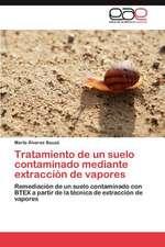 Tratamiento de Un Suelo Contaminado Mediante Extraccion de Vapores:  Productores de Cacao de Pequena Escala