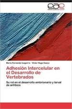 Adhesion Intercelular En El Desarrollo de Vertebrados:  Teoria E Investigacion