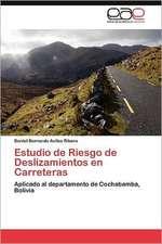 Estudio de Riesgo de Deslizamientos En Carreteras:  Estructura y Fenomenos