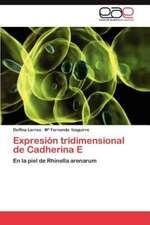 Expresion Tridimensional de Cadherina E:  Herramienta de La Web 2.0 Para Algebra Lineal