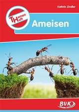 Themenheft Ameisen
