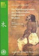 Die Wandlungsphasen 1 der traditionellen chinesischen Medizin