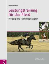 Leistungstraining für das Pferd