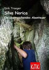 Silva Norica 04. Ein überraschendes Abenteuer