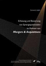 Erfassung und Bewertung von Synergiepotenzialen im Rahmen von Mergers & Acquisitions