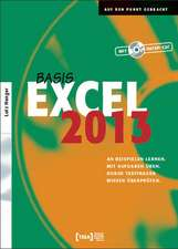 Excel 2013 Basis Buch